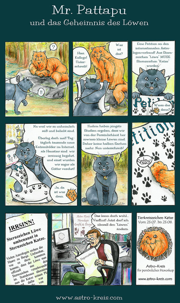 Mr Pattapu und das Geheimnis des Löwen